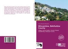 Bookcover of Wincentów, Bełchatów County