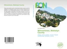 Bookcover of Wincentowo, Wolsztyn County