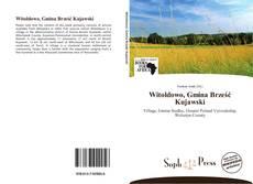 Bookcover of Witoldowo, Gmina Brześć Kujawski