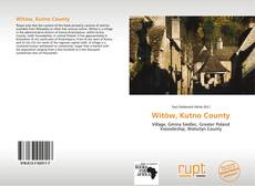 Bookcover of Witów, Kutno County