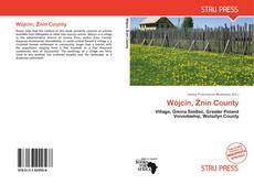 Bookcover of Wójcin, Żnin County