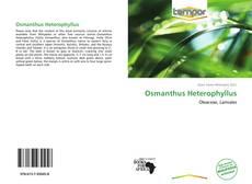 Bookcover of Osmanthus Heterophyllus