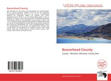Bookcover of Beaverhead County