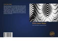 Capa do livro de Pelvis Justo Major