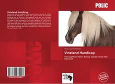 Bookcover of Vineland Handicap