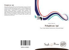 Couverture de Pelophryne Api