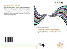 Bookcover of Pen Pumlumon Arwystli