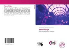 Buchcover von Team Ninja