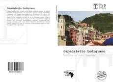 Bookcover of Ospedaletto Lodigiano