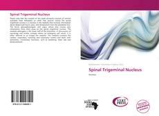 Copertina di Spinal Trigeminal Nucleus