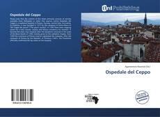 Обложка Ospedale del Ceppo