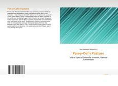 Capa do livro de Pen-y-Cefn Pasture
