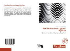 Bookcover of Pen Pumlumon Llygad-bychan