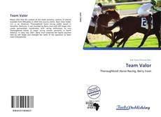 Team Valor kitap kapağı