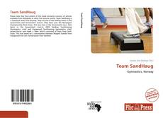Bookcover of Team SandHaug