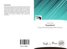 Bookcover of Penciclovir