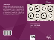 Bookcover of Andrej Križaj