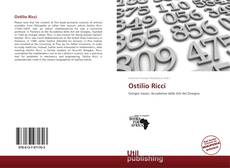 Bookcover of Ostilio Ricci