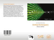 Andrejs Rastorgujevs kitap kapağı