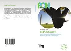 Capa do livro de Bedřich Pokorný