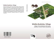 Bookcover of Wielkie Budziska, Village
