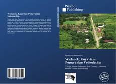 Bookcover of Wielonek, Kuyavian-Pomeranian Voivodeship