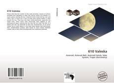 Bookcover of 610 Valeska