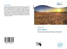 Bookcover of Ostrołęka