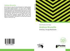 Bookcover of Andrew Brunette
