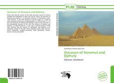 Portada del libro de Ostracon of Senemut and Djehuty