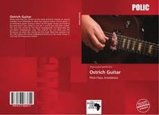 Ostrich Guitar的封面