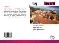 Capa do livro de Beerfelden