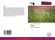 Bookcover of Beet
