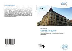 Buchcover von Ostróda County