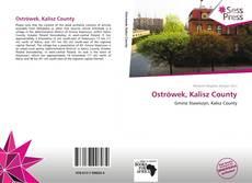 Ostrówek, Kalisz County的封面