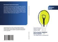Buchcover von Schumpeter beyond Schumpeter