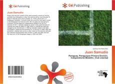 Bookcover of Juan Samudio