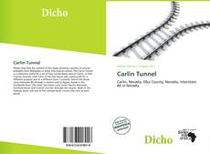 Copertina di Carlin Tunnel