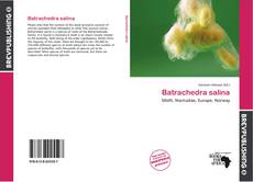 Couverture de Batrachedra salina