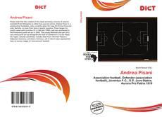 Bookcover of Andrea Pisani