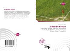 Bookcover of Gabriele Puccio