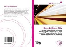 Bookcover of Gare de Meuse TGV