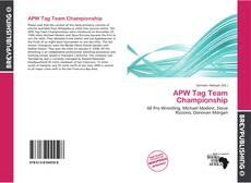 APW Tag Team Championship的封面
