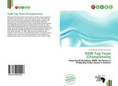 DSW Tag Team Championship的封面