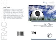 Capa do livro de Bruno Ribeiro
