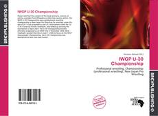IWGP U-30 Championship的封面