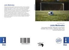 Bookcover of Julio Meléndez