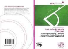 Bookcover of José Julio Espinoza Valeriani