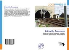 Portada del libro de Briceville, Tennessee