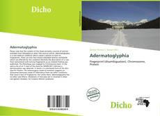 Adermatoglyphia的封面